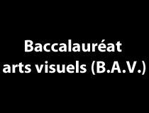 Baccalauréat en arts visuels (B.A.V.)