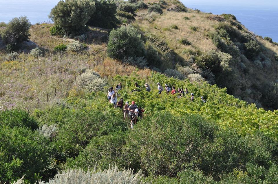 Étudiants escaladant l'acropole à Halaisa