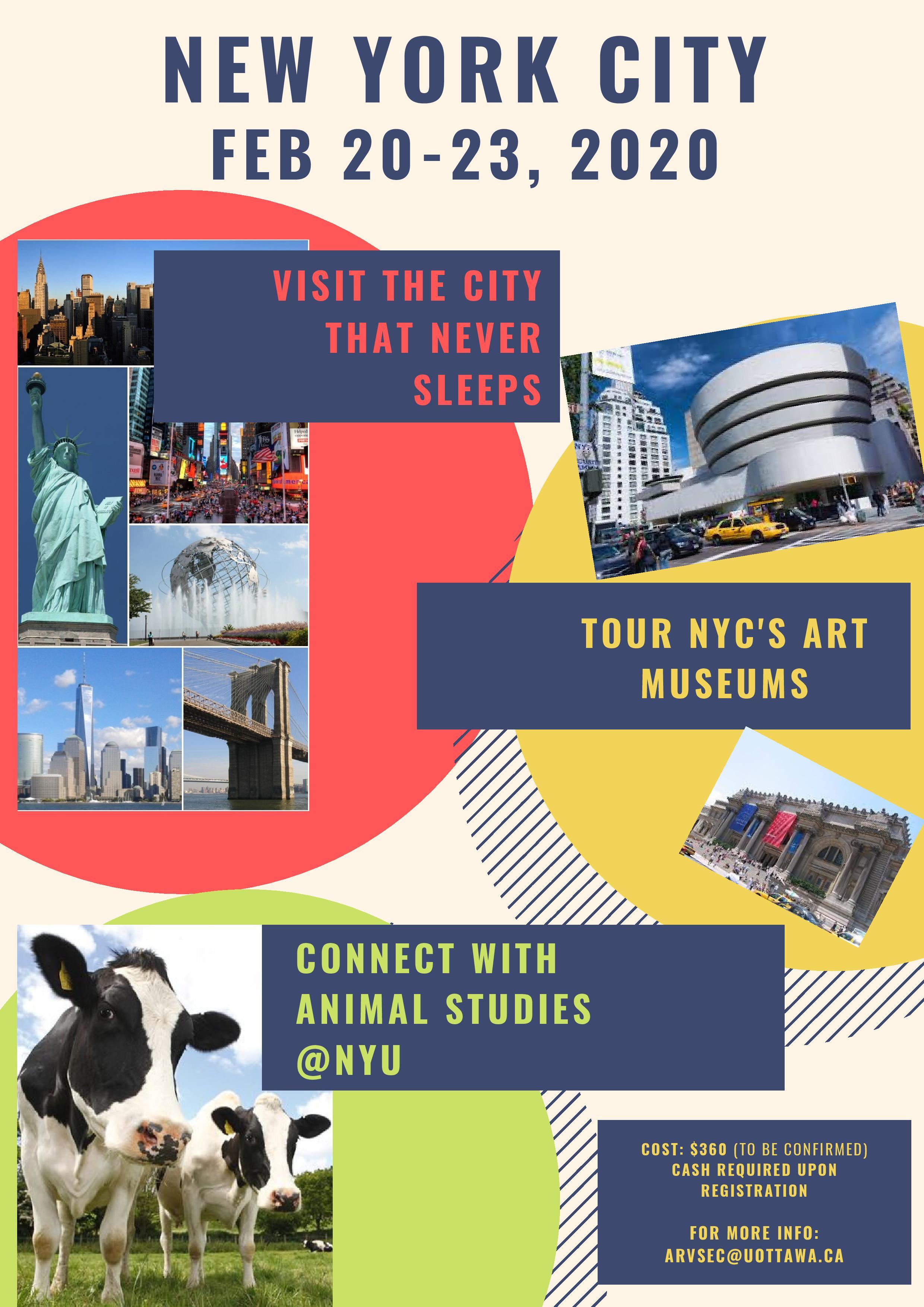 New York City Trip Poster English version