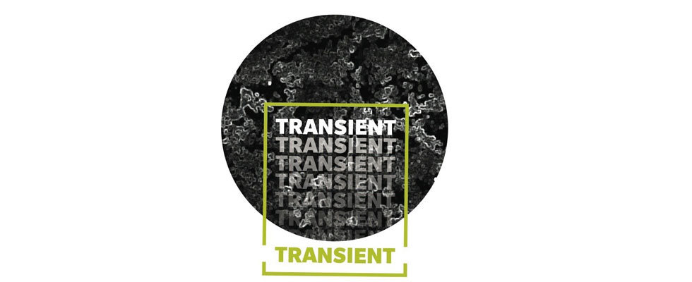 Transient expoition
