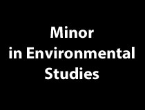 Minor in Environmental Studies