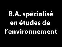 B.A. spécialisé en études de l'environnement