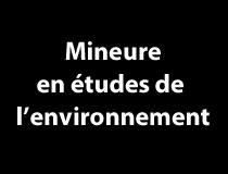 Mineure en études de l'environnement