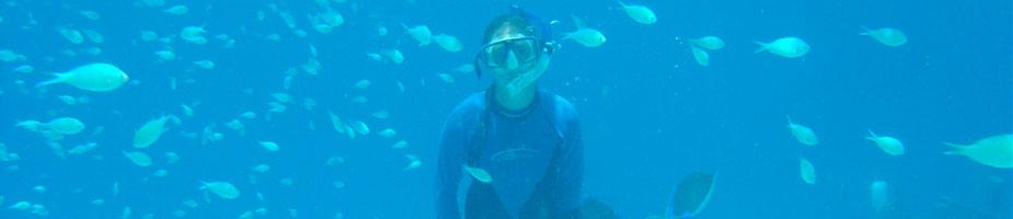 Zanzibar under water