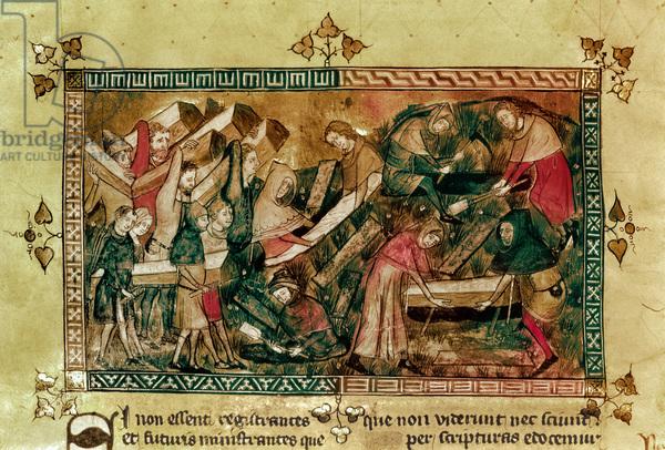 Medical History Image