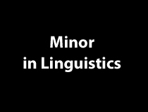 Minor in Linguistics
