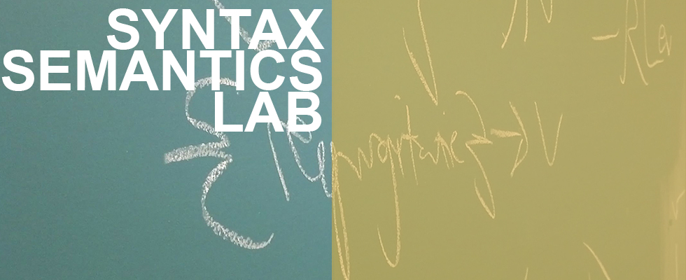 Syntax Semantics Lab