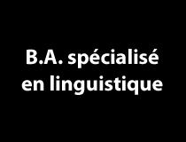 B.A. spécialisé en linguistique