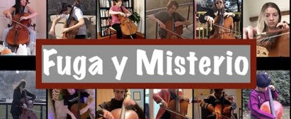 Photos of 12 cellists