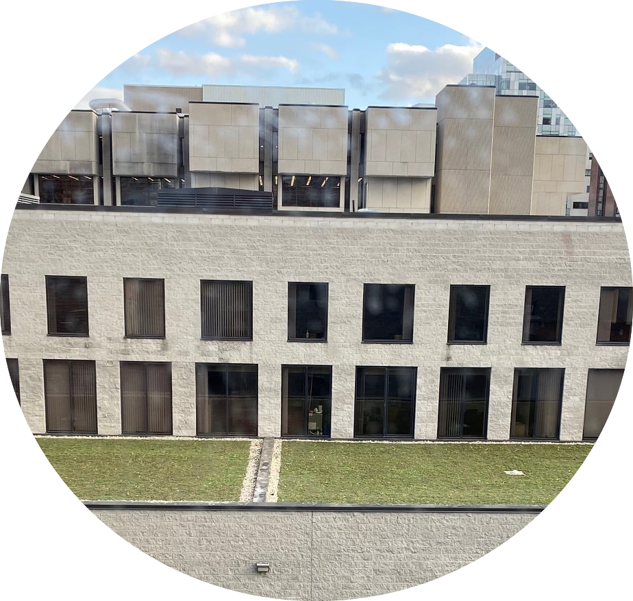 Photo of green roof of Perez Building