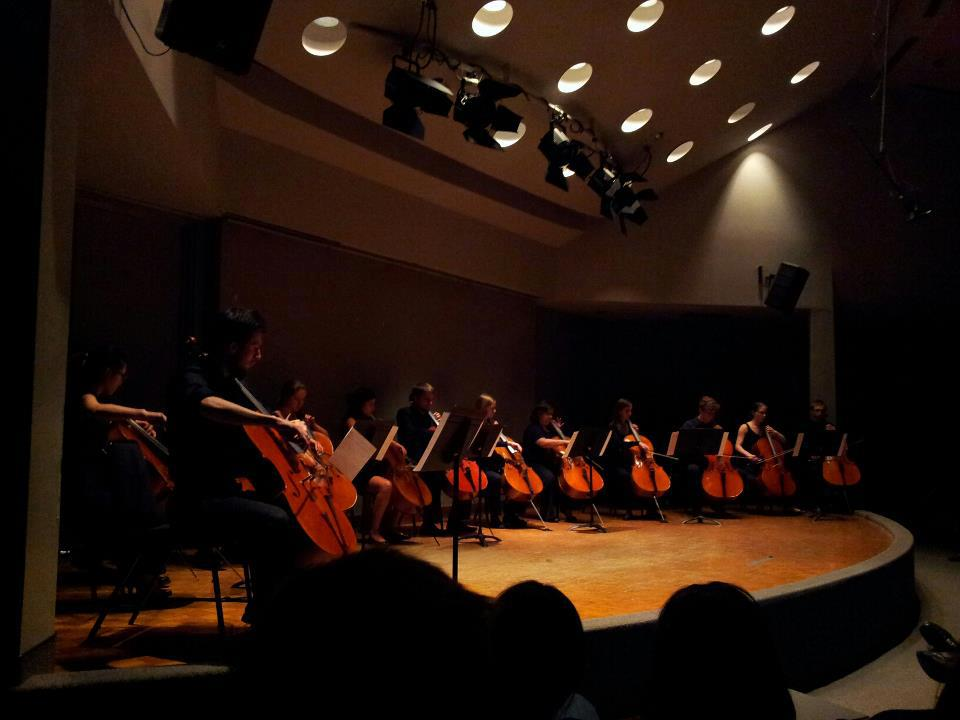 Group of violinists