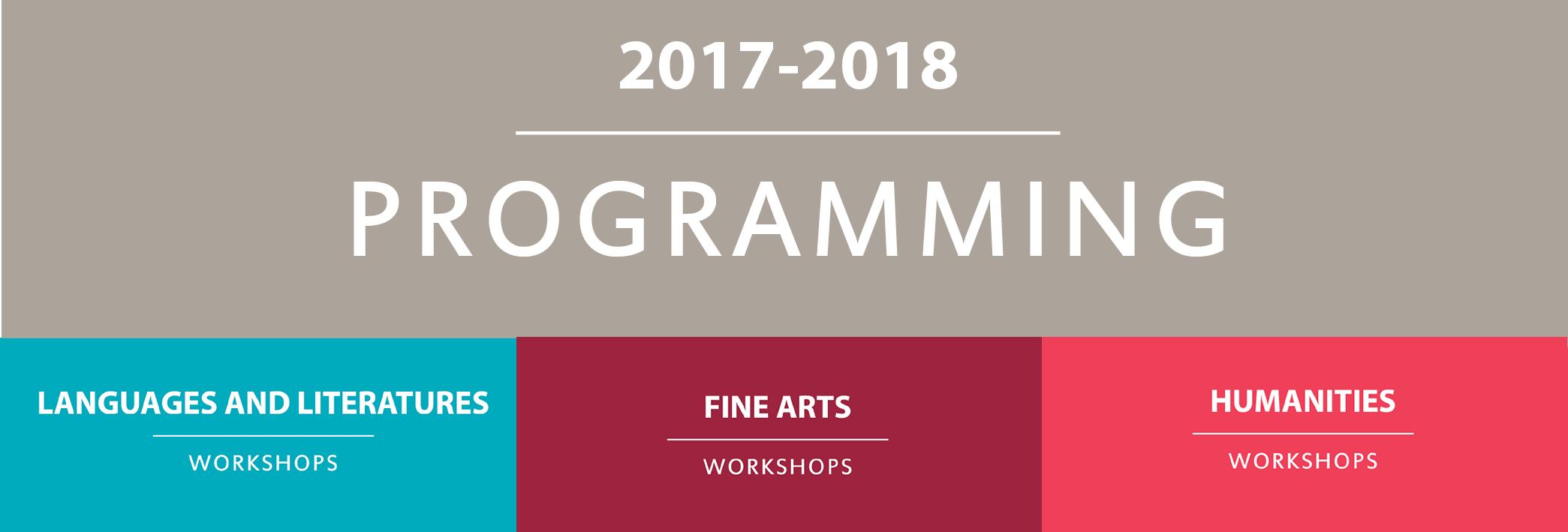 Professor-Ambassadors Program Programming