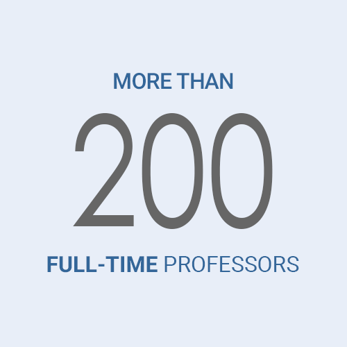 More than 200 Full-time professors